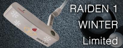 RAIDEN 1 WINTER Limited パター